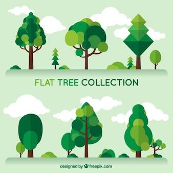 Colección de árboles verdes en diseño plano