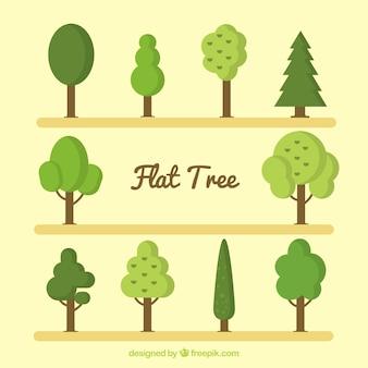 Colección de árboles verdes