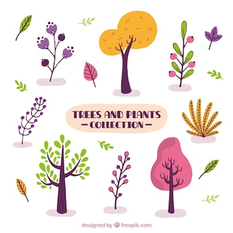 Colección de árboles y plantas de color