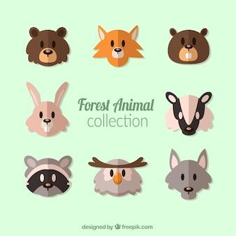 Colección de avatares de animales del bosque en diseño plano