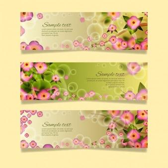 Colección de banner florales de primavera