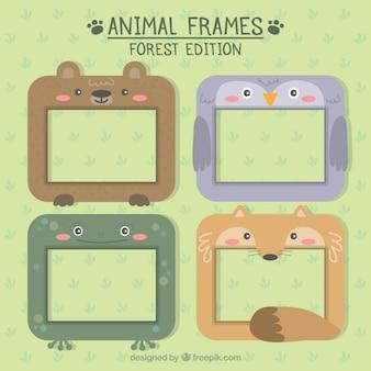 Colección de bonitos marcos animales