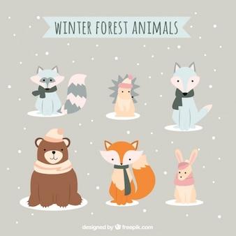 Colección de bonitos y adorables animales de invierno
