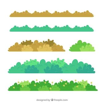 Colección de bordes de hierba en diferentes colores