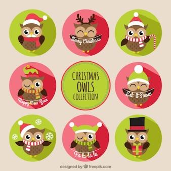 Colección de búhos navideños