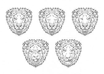 Colección de cabezas de león