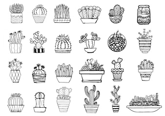 Colección de cáctus dibujados a mano