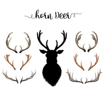 Colección de cuernos de ciervo en acuarela