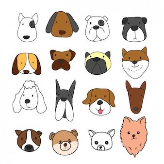 Colección de diferentes caras de perros