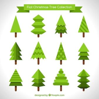 Colección de diferentes pinos en diseño plano