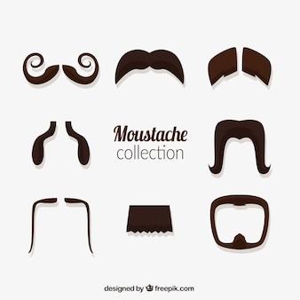 Colección de diferentes tipos de bigotes