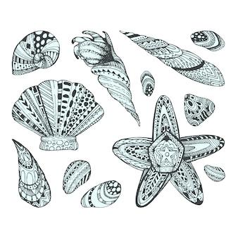 Colección de diseños de conchas marinas