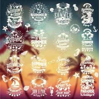Colección de diseños de verano