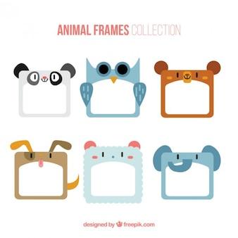 Colección de divertidos marcos de animales