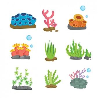 Colección de elementos coloridos de la vida marina