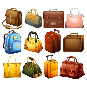 Colección de elementos de equipaje