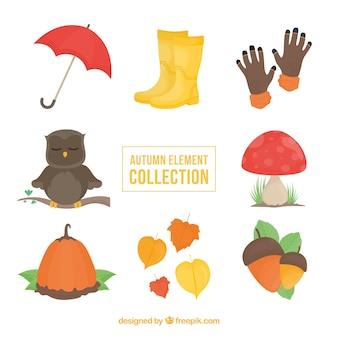 Colección de elementos naturales de otoño  y búho