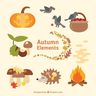 Colección de elementos naturales en temporada otoñal