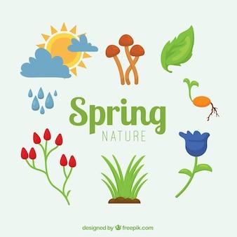 Colección de elementos primaverales