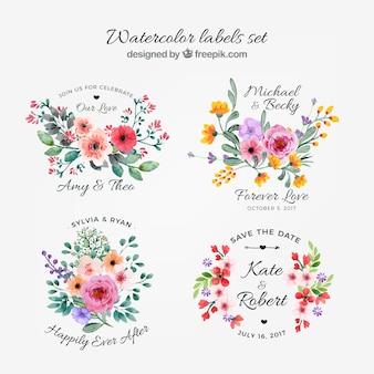 Colección de etiquetas florales en acuarela