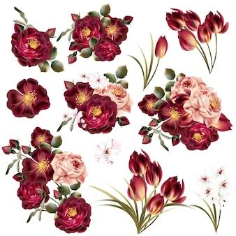 Colección de flores a color