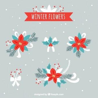 Colección de flores de pascua decorativas dibujadas a mano