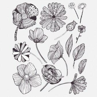Colección de flores decorativas