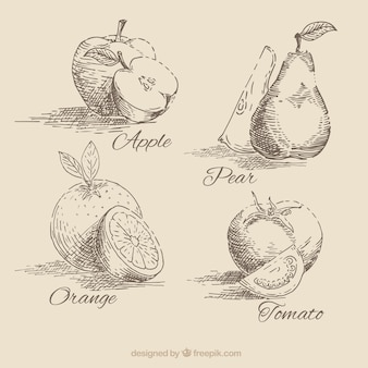 Colección de fruta dibujada a mano