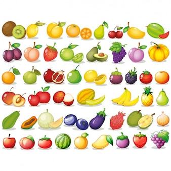 Colección de frutas a color