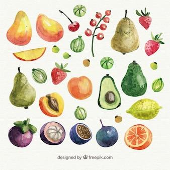 Colección de frutas en estilo de acuarela