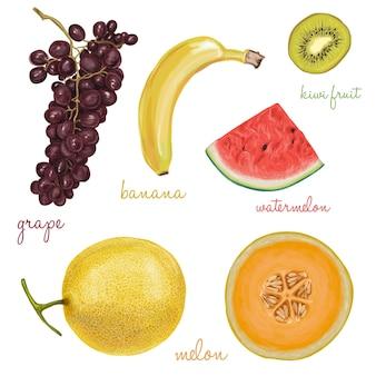 Colección de frutas pintadas con acuarelas