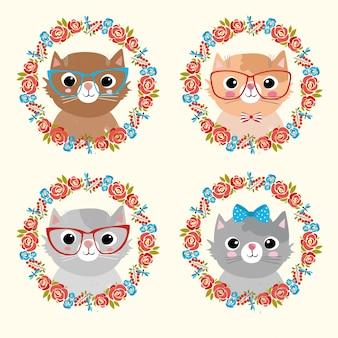 Colección de gatos adorables