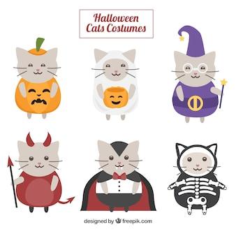 Colección de gatos bonitos disfrazados de halloween