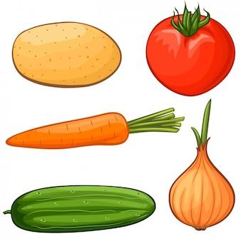 Colección de hortalizas a color