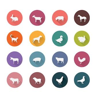 Colección de iconos de animales