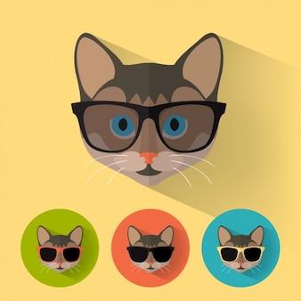Colección de iconos de gato