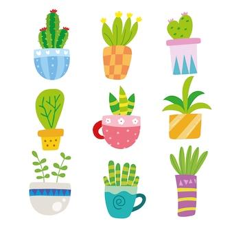 Colección de ilustraciones de cactus