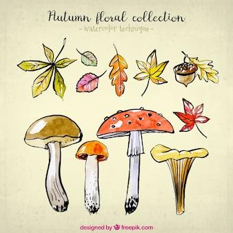 Colección de la naturaleza para el otoño en acuarela
