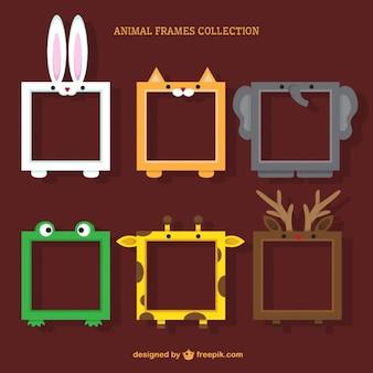 Colección de marcos de animales