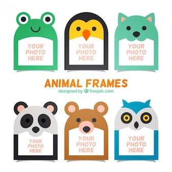 Colección de marcos de fotos de simpáticos animales