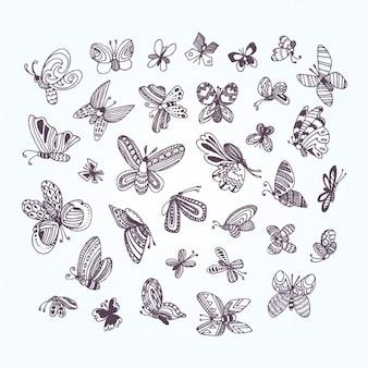 Colección de mariposas decorativas