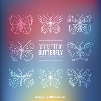 colección de mariposas Lineal