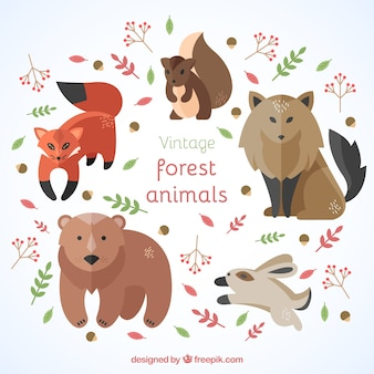 Colección de modernos animales del bosque en diseño plano