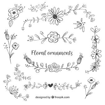 Colección de ornamentos florales dibujados a mano