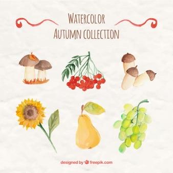 Colección de otoño de acuarela