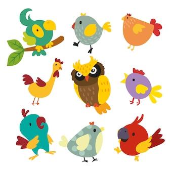 Colección de pájaros a color