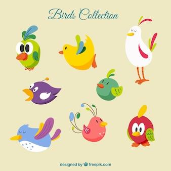 Colección de pájaros de dibujos