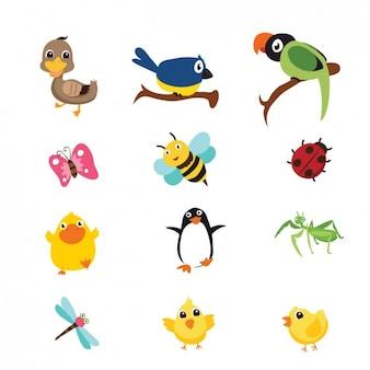 Colección de pájaros e insectos