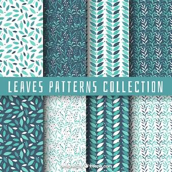 Colección de patrones con hojas