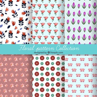 Colección de patrones de variedad de flores